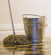 Maids cleaning homes