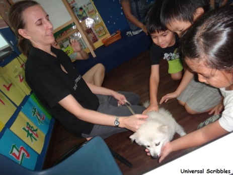 ACRES Animal welfare